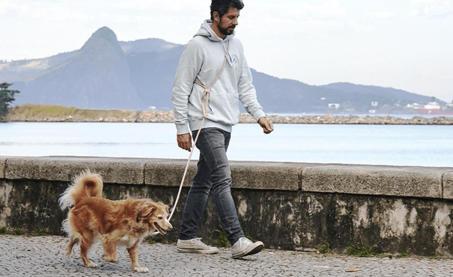 巴西宠物商店「Zee.Dog」获 1880 万美元融资,想做宠物领域的潮牌 ...